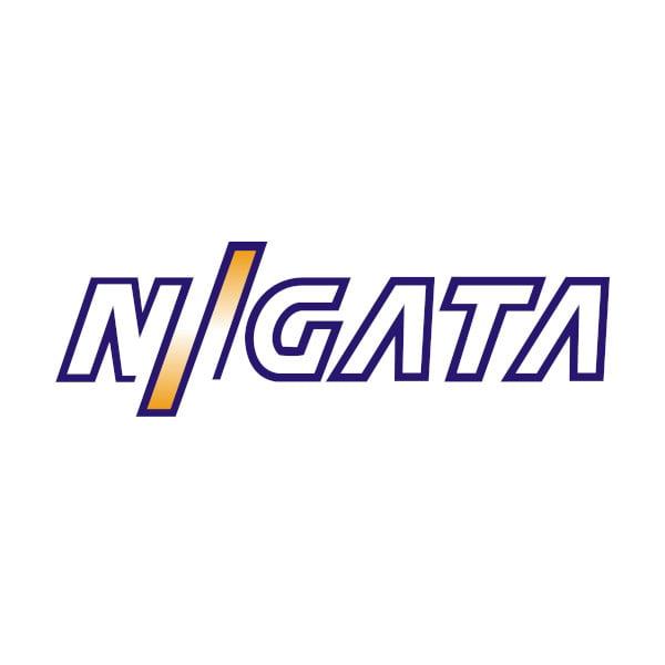 Niigata Marine Engines